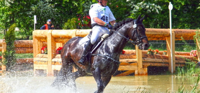 Sportoktató (lovaglás) OKJ képzés Kecskeméten