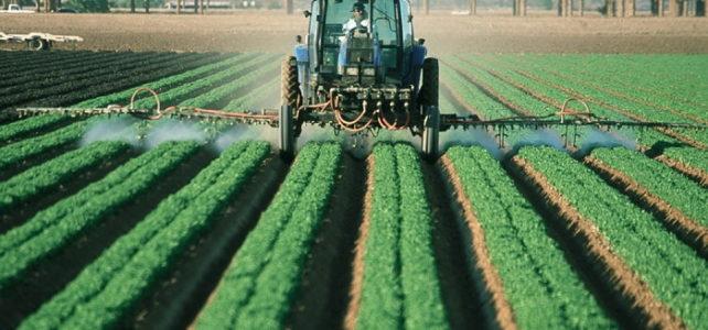 Mezőgazdasági technikus estis OKJ képzés Kecskeméten